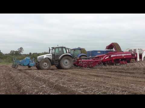 Rockvale Farms Potato Harvest
