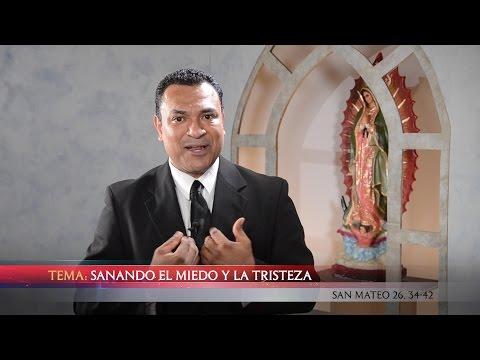 ¡NUEVO! Predicadores Católicos - TV En Fuego - #87 Jesús Alvarez - Sanando el Miedo y la Tristeza