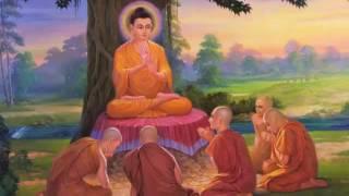Kể Truyện Đêm Khuya_Thập Thiện Nghiệp Đạo P4_Những Lời Phật Dạy