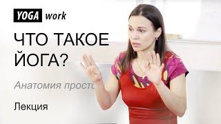 видео Анатомия для фитнес инструкторов