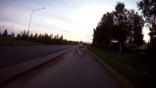 2012-08-31 Alaskan Malamute Sled-Dog Training with Cart - long sequence video.mp4