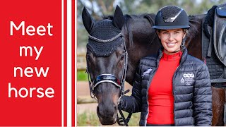 MEET MY NEW HORSE | TACK UP AND RIDE WITH ME