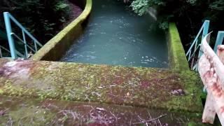【大川瀬ダム~】鴨川導水路沿いを歩く:②