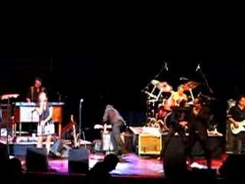Jim Belushi Live