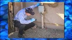 Pest Control Tucson, AZ -- Wildcat Exterminating