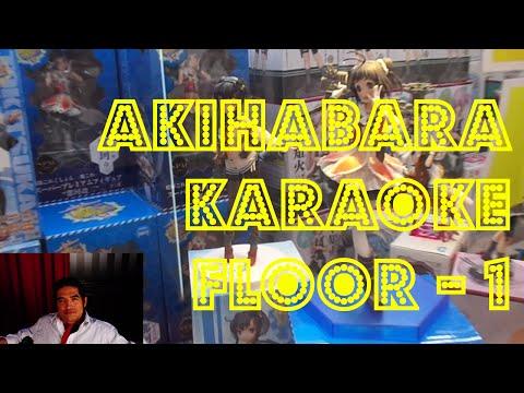 Akihabara Adores Karaoke - Floor 1 (UFO Catchers)