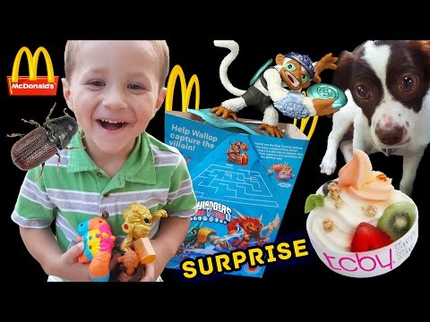 Thumbnail: SKYLANDERS HAPPY MEAL TOYS Guessing Game + Fling Kong Surprise w/ Sky Dog Rose! (TRAP TEAM FUN!)