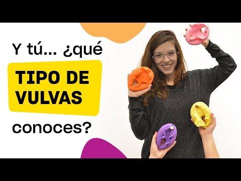 Tipos de vulva que debes conocer