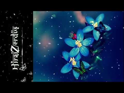 Yurtseven Kardeşler - Ölmek Vardır Dönmek Yoktur (Official Video)