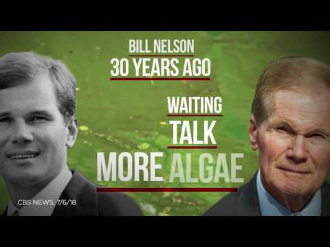 Toxic algae has oozed out of lakes and into Florida's Senate race