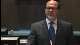 Sesión 399 del Pleno (13-07-2016)