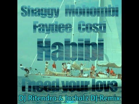habibi-i-need-your-love---dj-ritendra-x-jackalz-dj-x-shaggy-x-mohombi-(zoukyton-remix)