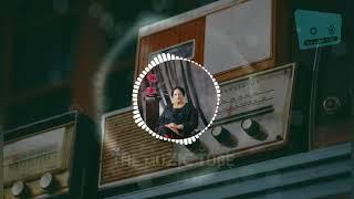 Chan kithan Guzari     surinder kaur    New Song    Remix    The Muzic Tube