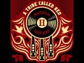 A Tribe Called Red - The Virus