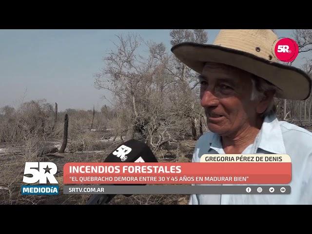Más de 1000 hectáreas de bosque nativo se quemaron en septiembre el norte santafesino
