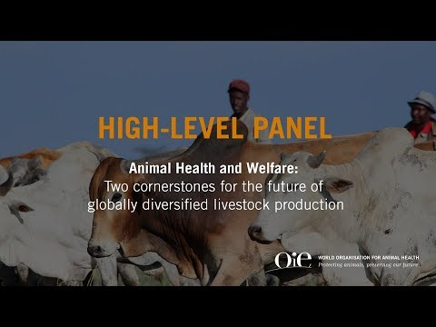 Cornerstones for the future of globally diversified livestock production