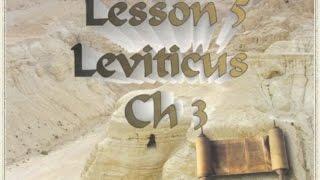 L 05 Tom Bradford's Torah Class - Leviticus Chapter 3 - The Zevah Shelamim korban