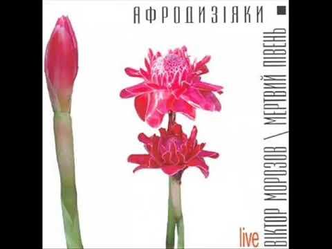 песня oh my dear ukraine\\. Слушать Мертвий Півень і Віктор Морозов - Oh My Dear Ukraine полная версия