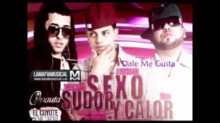 Sexo, Sudor y Calor Ñengo y Dalmata Ft J Alvarez Reggaeton 2011