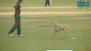 #funny moments in cricket . nepal vs kenya match