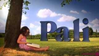 История компании Pali