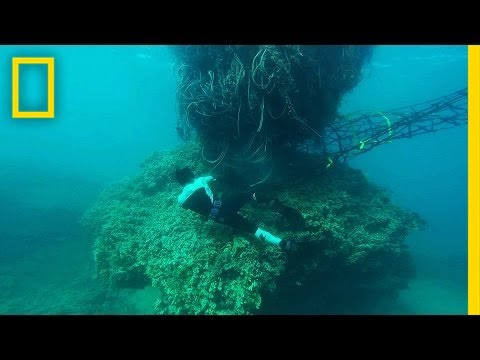The Monster 11-Ton Net That Threatened Hawaii's Coast | National Geographic