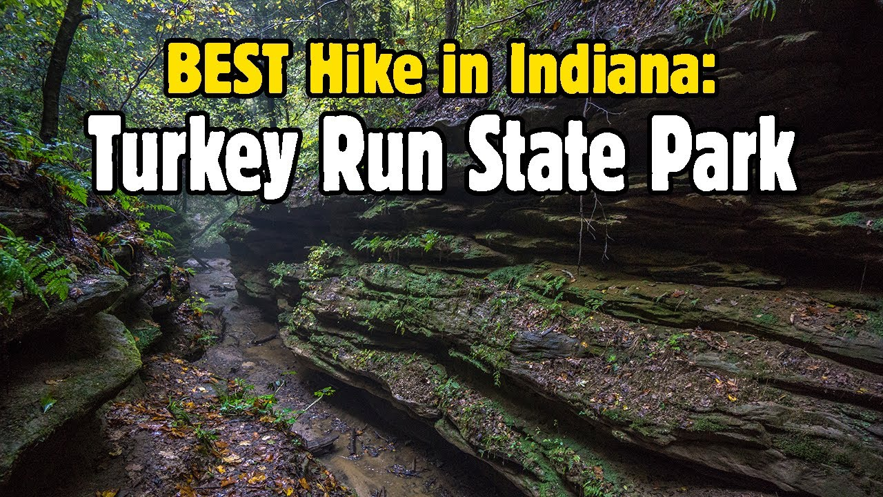 Hiking Turkey Run State Park, Indiana on ambarli turkey map, indiana state park family cabins, turkey run state park trail map, indiana map showing state parks, indiana dunes state park map, indiana state wild animal, indiana shades state park map, indiana chain o'lakes state park map, indiana wildlife, turkey run campground map, indiana mounds state park map, indiana turkey person, indiana state campgrounds map, brookville indiana state park map, indiana brown county state park map, indiana state national parks, cagles mill lake map, big indiana state map, turkey country map, indiana state map printable,