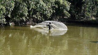 Cast Net Fishing In Amazing Big Fish Best Net Fishing P 166
