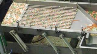 PPM Technologies LBL Conveyor