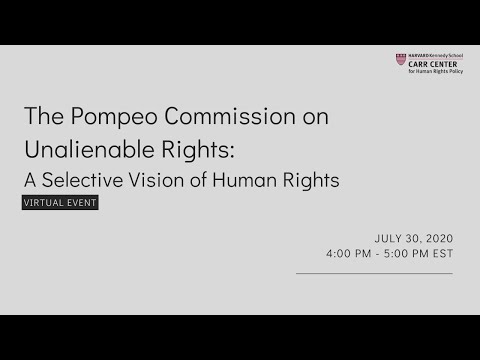 The Pompeo Commission on Unalienable Rights: A Selective Vision of Human Rights