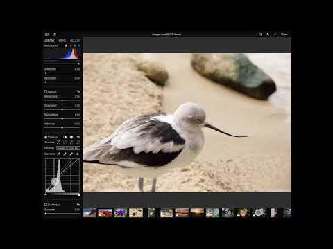 RAW Power for iOS - Editing