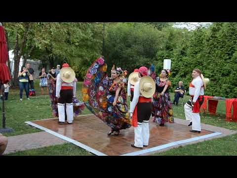 Fiesta Ravinia 2017 Highlights