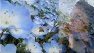 Синие цветы. Песня.(, 2012-04-22T20:16:14.000Z)