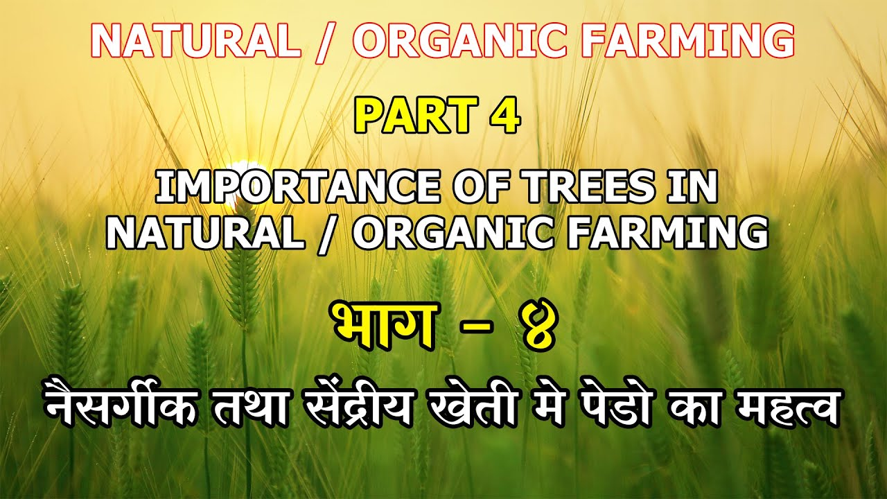 Importance of Trees in Natural Farming and Organic farming.