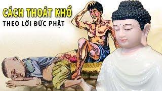 Lời Dạy Quý Hơn Ngàn Vàng Của Đức Phật Giúp Con Người Vượt Qua Khó Khăn Bế Tắc- Ai Cũng Nên Nghe Qua