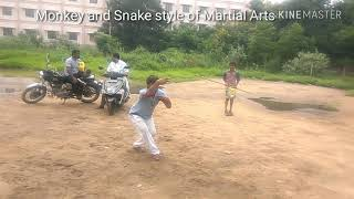 Monkey and Snake style of Martial arts by senior student