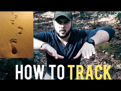 5 Techniques to Track Man