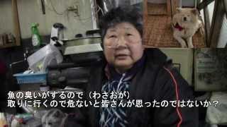 お母さんが「わさおとの出会い」を話してくれました。捨て犬だった秋田...