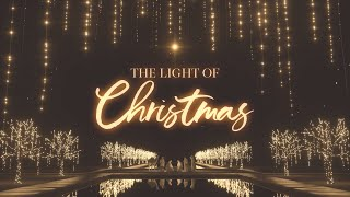 The Light of Christmas Don't Leave 2020 Without Jesus