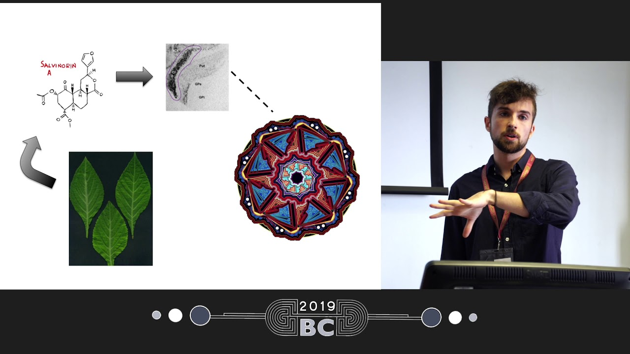 Patrick Smith - Salvia divinorum and The Wheel What Can We Learn From This Persistent Phenomenon?