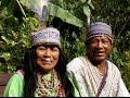 Nimea Kaya ~ Ayahuasca Healing Center