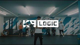 K9 Logic - Dog Training