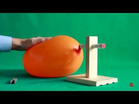 Видеоурок школьной программы