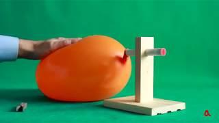 Урок физики для детей №6. Видео урок по школьной программе физики. Наука для детей глазами детей.