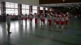 迦密唐賓南紀念中學銀樂隊, 12-7-2014比賽錄影