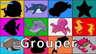 Sea Animals for Children Educational Videos for Kindergarten Kids Learning #Dog Kids