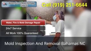 Mold Inspection And Removal Bahamas NC (919) 251-6644