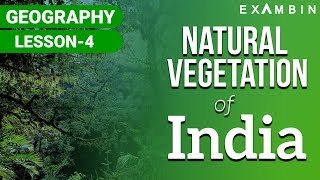 Natural Vegetation of India I Natural vegetation of INDIA UPSC/IAS