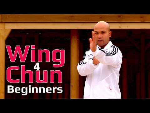 Wing Chun beginners lesson 5: basic hand exercise/changing guard hands with twist