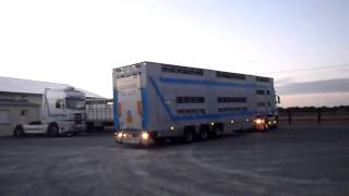 Transports Gregoire (livestock-express.sky)